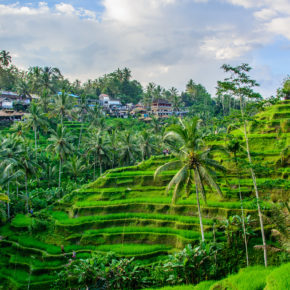 Traumurlaub 2021: 15 Tage Bali im 4* Hotel mit Frühstück & Flug nur 657€