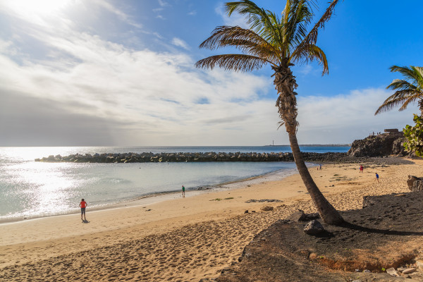 Lanzarote Playa Blanca Flamingo Beach