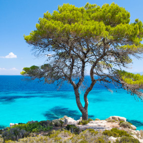 Sommer in Griechenland: 8 Tage Chalkidiki im Apartment inkl. Flug nur 150€