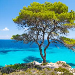 Griechenland: 6 Tage Chalkidiki im TOP 4* Hotel mit Halbpension, Flug & Transfer nur 321€