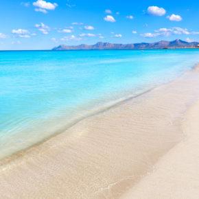Urlaub auf Mallorca: 7 Tage in Paguera im 4* Boutique Hotel mit Halbpension, Flug & Transfer nur 430€