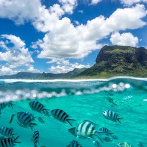 Lastminute nach Mauritius: 12 Tage mit Apartment in Strandnähe & Direktflug nur 518€