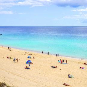 Frühbucher Kanaren: 8 Tage Fuerteventura mit Flug & Apartment nur 150€