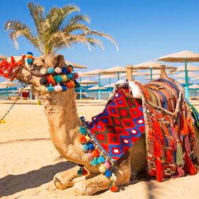 Ägypten im Sommer 2021: 7 Tage im 4* Hotel mit Halbpension, Flug & Transfer nur 296€