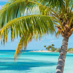 Bahamas, Südafrika & mehr: 121 Tage Weltreise an Bord der Columbus mit Vollpension um 10.321€