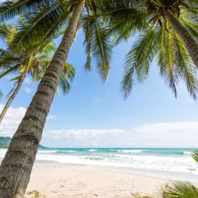 15 Tage in die Sonne: Hin- & Rückflüge nach Costa Rica nur 455€