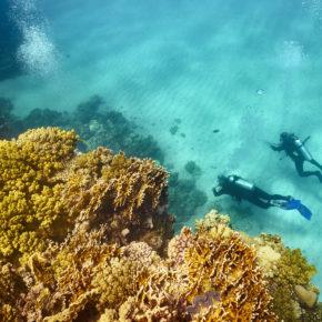 7 Tage Hurghada im 5* Hotel mit All Inclusive, Flug & Transfer nur 378€