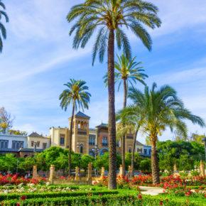 Langes Wochenende: 4 Tage Valencia mit zentraler TOP Unterkunft & Flug nur 76€