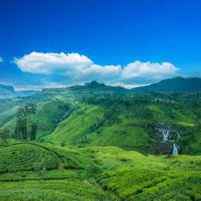 Sri Lanka + Malediven: Flüge in einem Trip auf die Trauminseln inkl. Gepäck nur 487€