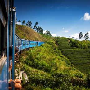 Sri Lanka Tipps: Eine Entdeckungsreise durch die Perle des Indischen Ozeans