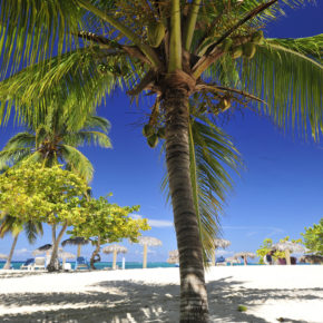 Traumurlaub: 10 Tage Kuba im TOP 4* Hotel mit All Inclusive, Flug & Transfer um 994€