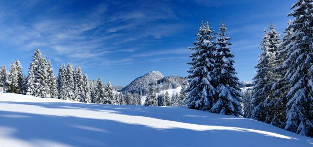 Deutschland Allgäu Schnee Skifahren