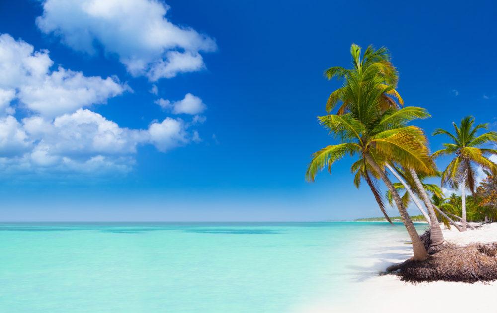 Punta Cana Hotel Und Flug