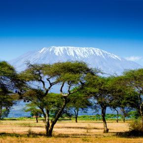 Kenia: 15 Tage nach Nairobi mit Hin- und Rückflug & Gepäck nur 380€