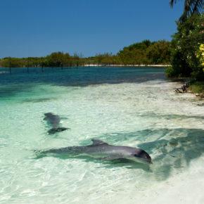 Kuba: 7 Tage im 4* Hotel mit All Inclusive, Flug & Transfer nur 937€