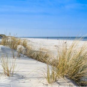 Strandhaus in Holland: 8 Tage direkt an der Nordsee für 77€