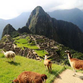 2021 endlich Südamerika entdecken: Hin- & Rückflüge nach Peru nur 412€