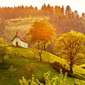 Die 5 schönsten Weinanbaugebiete in Deutschland