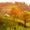 Die Top 5 der schönsten Weinanbaugebiete in Deutschland