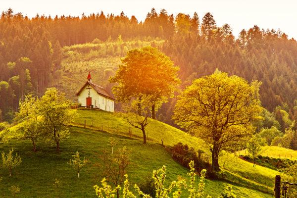 Schwarzwald Häuschen