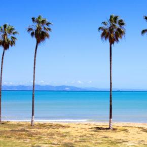 Tunesien im Hochsommer: 7 Tage im TOP 4* Hotel in Djerba mit All Inclusive, Flug & Transfer nur 344€
