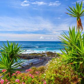 Teneriffa: 7 Tage im 3* Hotel mit All Inclusive, Flug, Transfer & Zug für 595€