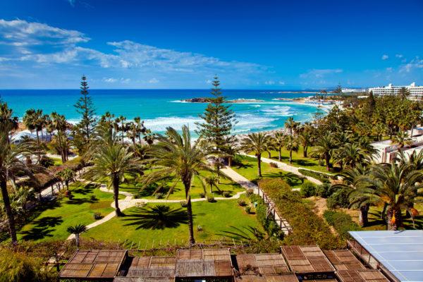 Zypern Strand Palmen