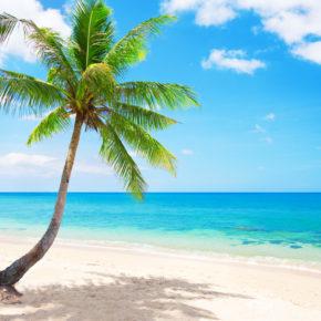 Die Malediven Thailands: 14 Tage auf Koh Lipe im TOP Beach-Bungalow mit Flug nur 459€