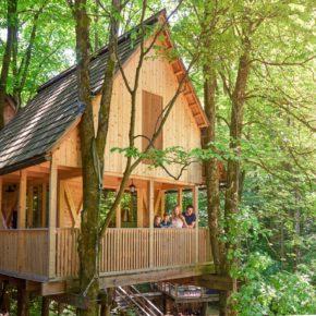 Glamping-Kurztrip am Wochenende: 2 Tage Slowenien im TOP Baumhaus mit Frühstück nur 88€