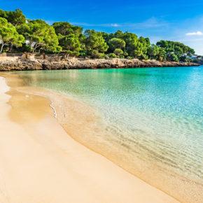Frühbucher Mallorca: 7 Tage im 4* Hotel mit Halbpension, Flug & Transfer für 339€