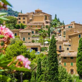 Mallorca Frühbucher: 7 Tage im TOP 4* Hotel am Strand mit Halbpension, Flug & Transfer nur 260€
