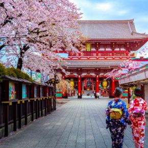 Kirschblüte in Japan: Hin- & Rückflüge nach Tokio inkl. Gepäck um 416€