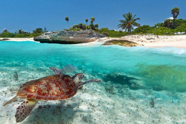 Mexiko Karibisches Meer