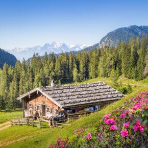 Wellness im Salzburger Land: 3 Tage im 4* Hotel mit Frühstück & Eintritt in die Alpentherme ab 79€