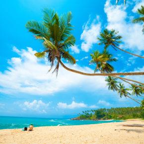 Sri Lanka: 14 Tage mit TOP 3* Resort in Strandnähe & Flug nur 535€