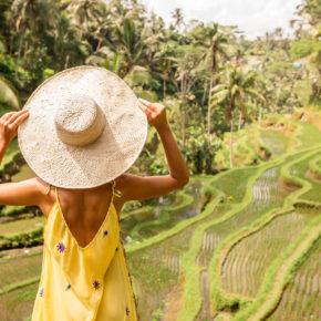 Bali Reisterrassen Frau