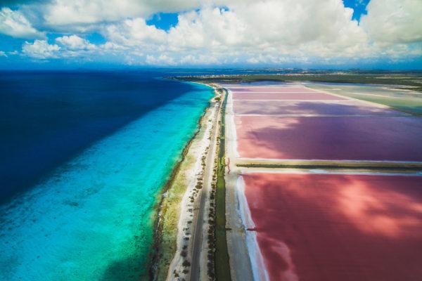 Bonaire Salinen