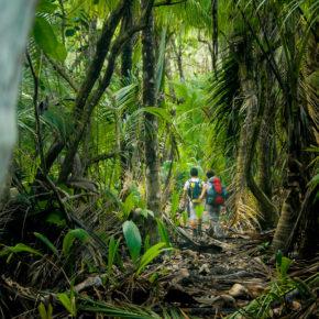 Costa Rica Corcovado Nationalpark wandern