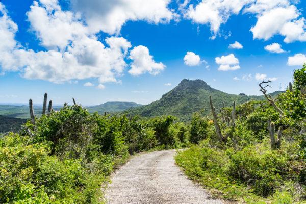 Curacao Willemstad Christoffel Nationalpark