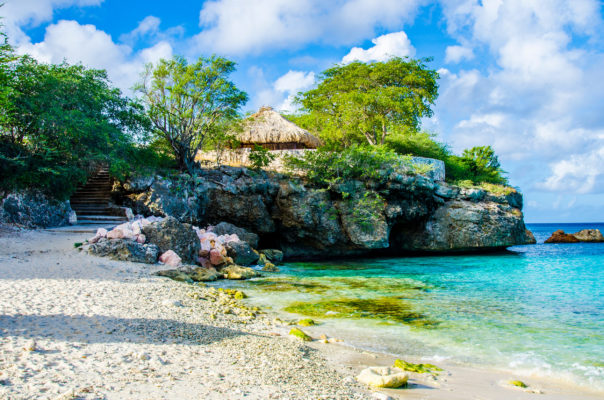 Curacao Grote Knip