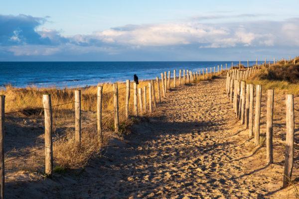 Niederlande Egmond Aan Zee Strand