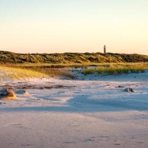 Die besten Tipps für die 16 schönsten Strände in Holland