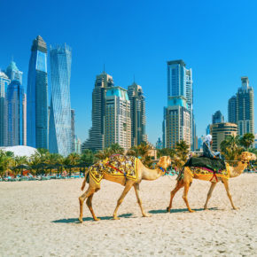 TOP 5* Hotel mit Rooftop-Pool: 7 Tage Dubai mit Frühstück, Flug & Transfer für 490€