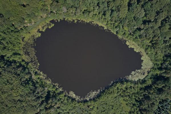 Dänemark Frederiksdal Nationalpark Skjuldogernes