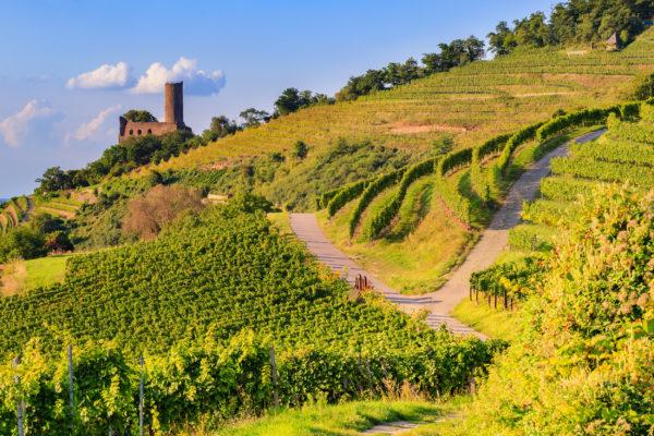 Deutschland Badische Weinstrasse