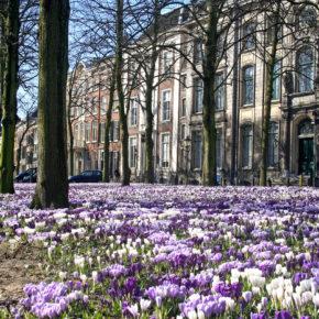 Die Niederlande Schnapper: Flüge nach Eindhoven nur 0,50€