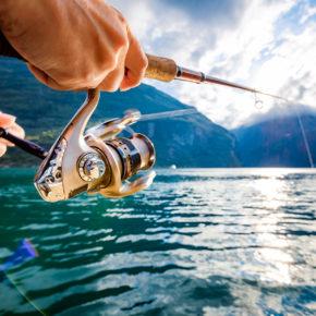 Angeln in Norwegen: Voraussetzungen, Angeltipps & die schönsten Regionen im Überblick