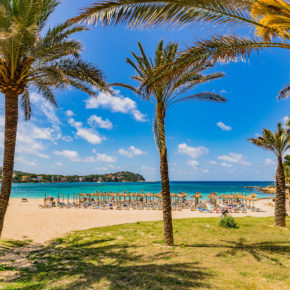 Lastminute nach Mallorca: 7 Tage im TOP 4.5* Hotel mit Halbpension, Flug & Transfer um 234€