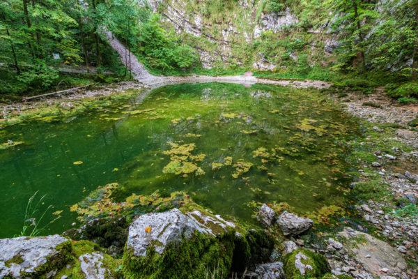 Slowenien Divje Jezero
