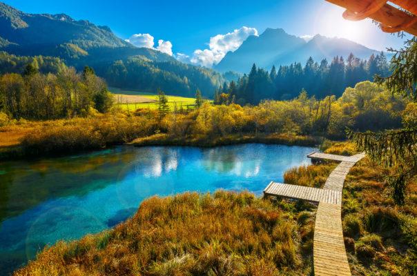 Slowenien Zelenci Herbst